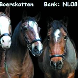 Kledinginzameling Vereniging Paardrijden Gehandicapten Ondersteuning