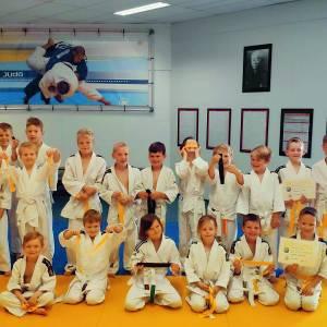 Bandenexamen Hantei judo zeer geslaagd